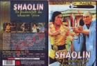 Shaolin - Bruderschaft der schwarzen Spinne - DVD NEU uncut