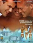 VHS - MALE TRIANGLE - SEYMOR COX GAY EROTIC