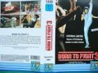 Born to Fight 3 ...  Cynthia Luster, Carol Wai, Brandy Mok