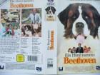 Ein Hund namens Beethoven ...  Charles Grodin, Chris Penn