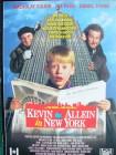 Kevin - Allein in New York   ...   Pappschuber !