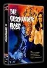 Die geschändete Rose - Mediabook - X Rated - DVD - NEU/OVP