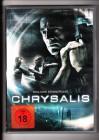 Chrysalis - Tödliche Erinnerung  DVD