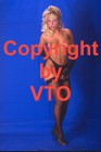 KELLY TRUMP - VTO - TERESA ORLOWSKI MODEL SEXY SUPERSTAR