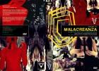 MALACREANZA (Arthouse Horrorfilm) Gr Hartbox D LIMITED 25