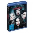 Wir sind die Nacht / Top Vampirfilm Blu Ray