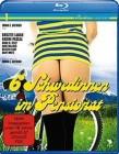 6 Schwedinnen im Pensionat [Blu-ray] (deutsch/uncut) NEU+OVP