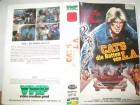 VHS - Cats - Die Ratten von L.A. - David Kyle - VMP