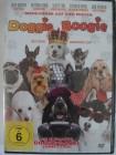 Doggie Boogie - bester Hunde Tanzfilm aller Zeiten