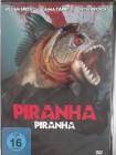 Piranha - Dschungel See voller hungriger Fische - Venezuela