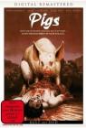 Pigs - NEU - OVP