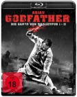 Asian Godfather - Die Gangs von Wasseypur BR - NEU - OVP