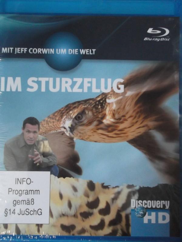Im Sturzflug - Tierdoku über den Wanderfalken - Falke