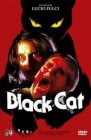 The Black Cat - gr. Hartbox / Cover A 84 DVD