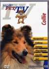 Collie - Meister PETz TV *DVD*NEU* Ratgeber - Hund