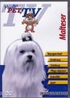 Malteser - Meister PETz TV *DVD*NEU* Ratgeber - Hund