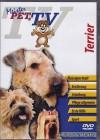Terrier - Meister PETz TV *DVD*NEU* Ratgeber - Hund