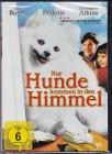 Nur Hunde Kommen In Den Himmel *DVD*NEU*OVP* Gary Busey