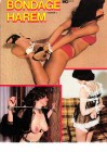 BDSM Bondage Harem No.5  - ca. 1983 vintage 70s look
