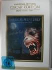American Werewolf - Fürchte den Mond - Werwolf, Zombies