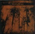 彡Marblebog/Draugurz - Split (Burzum,Hate Forest)