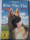 4 Filme mit Hund -  Rin Tin Tin Box - Rückkehr, Wildnis