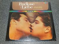 LD LASERDISC Bildplatte // Endlose Liebe Spectrum