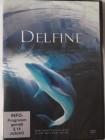 Delfine - tolle Aufnahmen - Paarung & Wale - im Ozean
