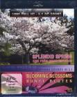 SPLENDID SPRING - Eine Frühlingssymphonie Blu Ray OVP