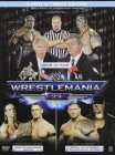 Wrestlemania 23, Steel-Case