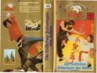 DIE TÖDLICHEN SCHWINGEN DES ADLERS - Hwang Jang Lee - VHS