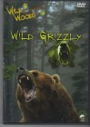 Wild grizzly
