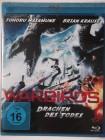 Warbirds - Drachen des Todes - Insel Weltkrieg Action