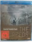 The Reeds - Sie spielen mit Dir ...um Dein Leben - T�dlichen
