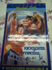 Kickboxer Invincible                 grosse Hartbox