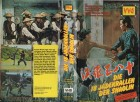 DIE 18 JADEKRALLEN DER SHAOLIN - VVG gr.HB SELTEN -  VHS