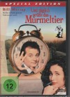 Und t�glich gr��t das Murmeltier *DVD*NEU*OVP* Bill Murray