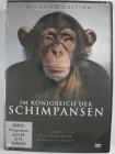 Im Königreich der Schimpansen - Affen in Freiheit, Aufzucht