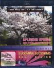 SPLENDID SPRING [Blu-ray]   (X)