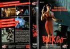 BLACK CAT ,Der eiskalte Hauch des Todes - gr.HB RAR - VHS