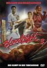 Bloodfight 3 - DVD Amaray Wendecover OVP