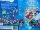 Arielle die Meerjungfrau  ... Walt Disney !! Erstausgabe !!
