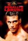 Geballte Ladung - Jean Claude van Damme - MGM Uncut DVD -Neu