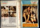 CASANOVA`70 -BEVERLY VERSCHWEISSTER COVERBOX gr.Cover-VHS