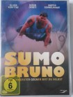 Sumo Bruno - WM in Sachsen, Riesa - Oliver Korittke