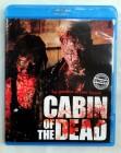 Cabin of the Dead - Uncut Horror aus Schweden