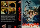 BIRDS OF PREY - Splendid gr.Hartbox - VHS