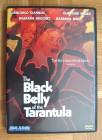 Black Belly of the Tarantula/Schwarze Leib der Tarantel