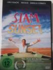 Siam Sunset - Mit dem Bus durch Australien - fliegende Kuh
