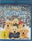Golden Winter - Wir suchen ein Zuhause *BLURAY*NEU*OVP*